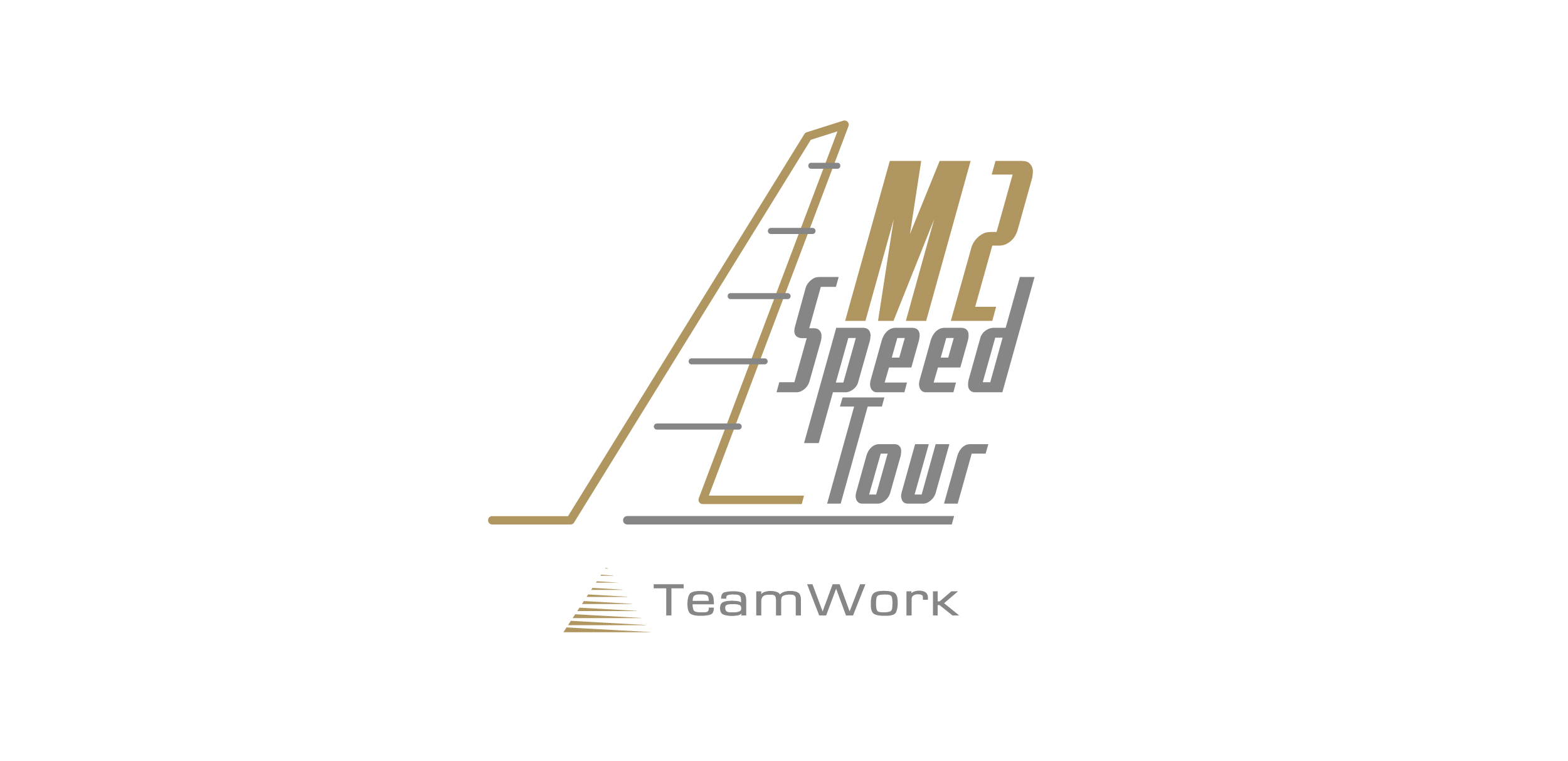 TeamWork M2 Speed Tour